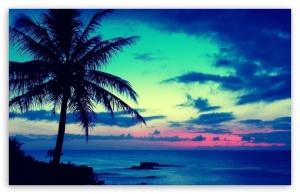tropical_sunrise-t2